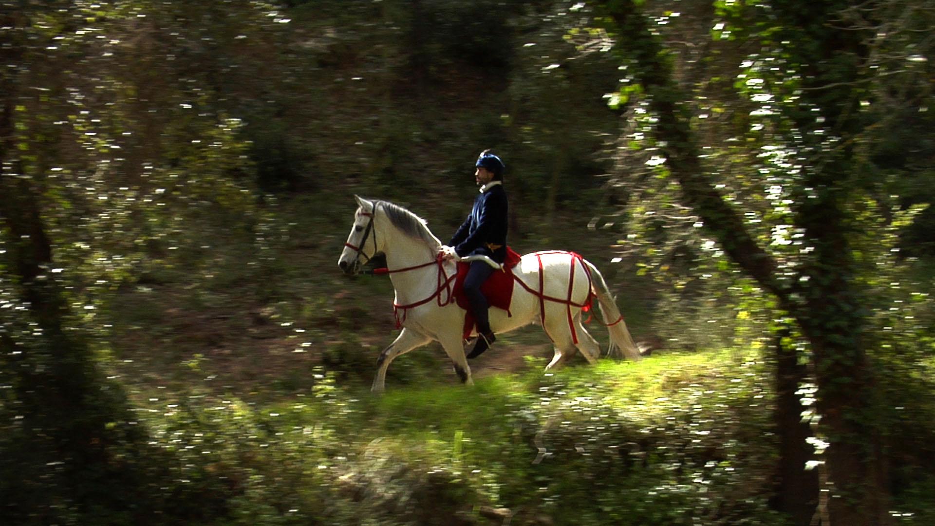 Guillem de la Bona al bosc de Marmellar